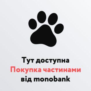 1080x1080-monobank